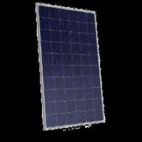 Canadian Solar Poly PV module, CS6P-P