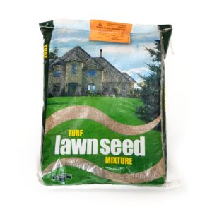 Lawn seed for the shady areas
